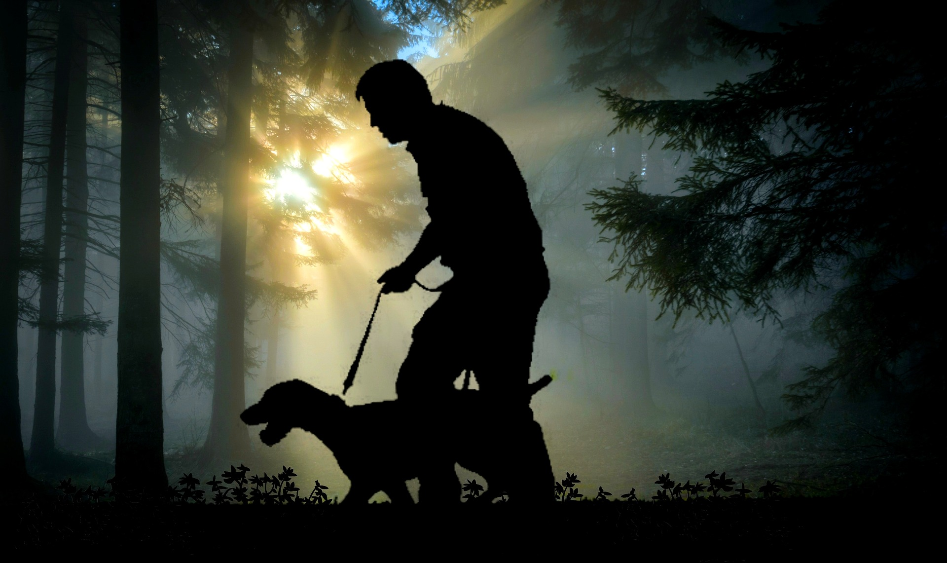 walk-dog